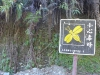 13-taroko-gorge-butterfly_sign