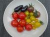01-Balcony_harvest-Tomatos_chilis