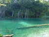 05-plitvice-blue-water-log