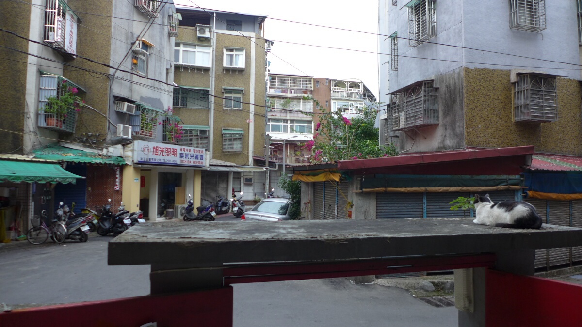 06-taipei-about_animals-view