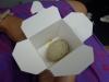 20-attica-pukeko-egg
