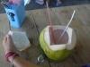 11-derawan-king-coconut
