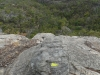 13-grampians-hollow-mountain-steep-trail