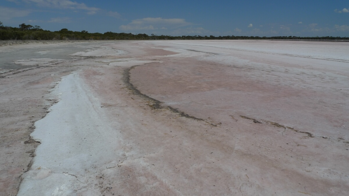 04-dimboola-pink-lake-shore