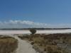 01-dimboola-pink-lake