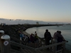 02-melbourne-st-kilda-penguins-crowd-waiting-for-penguins