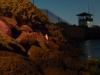 04-melbourne-st-kilda-penguins-coming-home