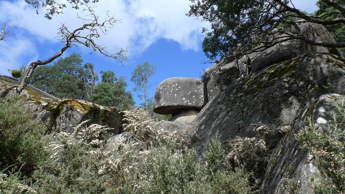 05-alpine-trail-mushroom-rock
