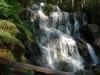 06-toorongo-falls