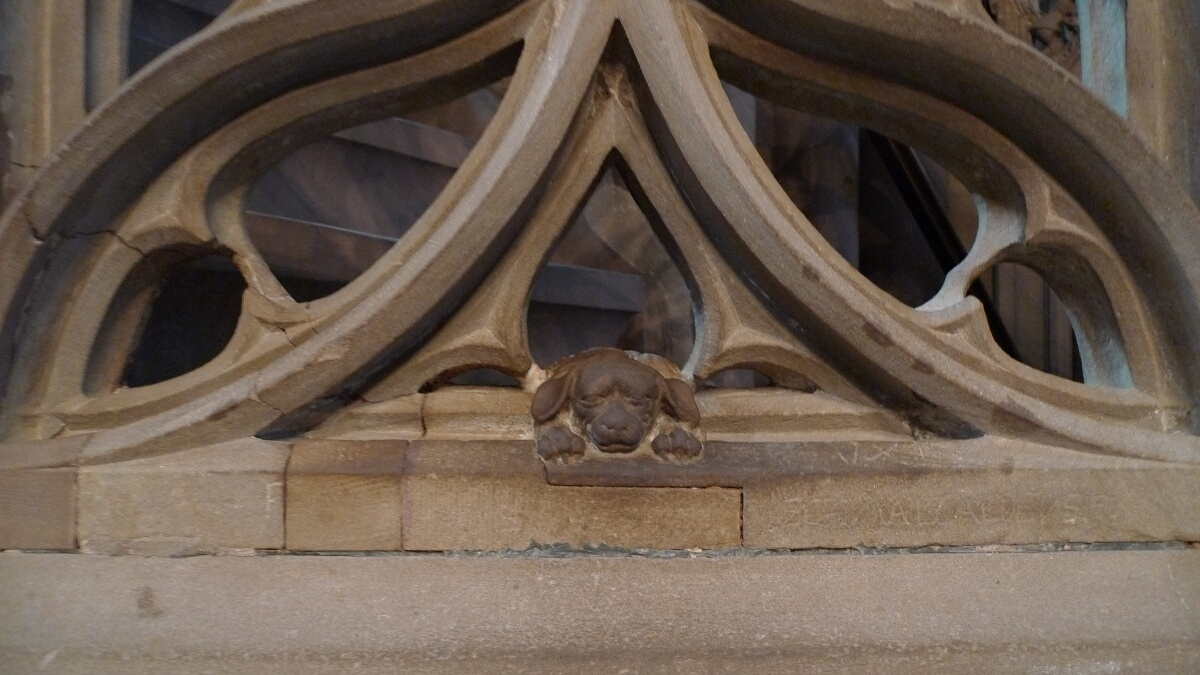 06-cathedral-dog