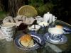 01-tarra-bulga-devonshire-tea