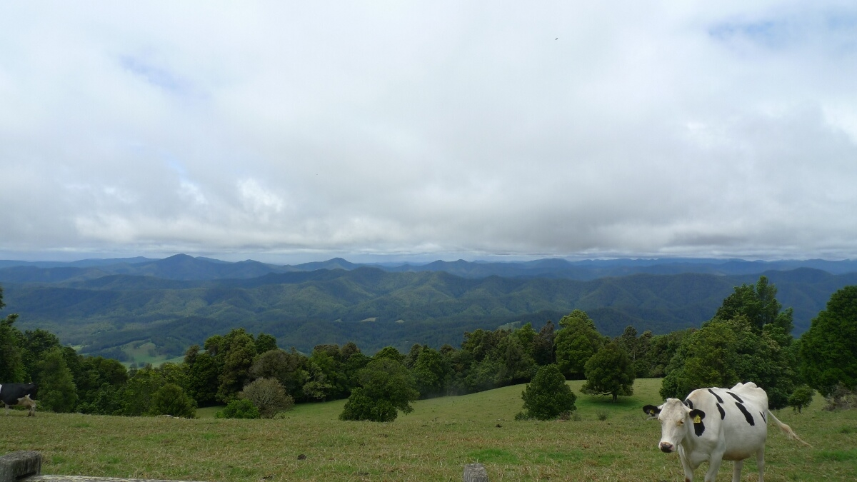01-view-of-the-great-dividing-range